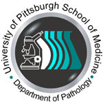 University of Pittsburgh School of Medicine Department of Pathology